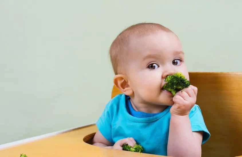 Il Mio Bambino Non Mangia